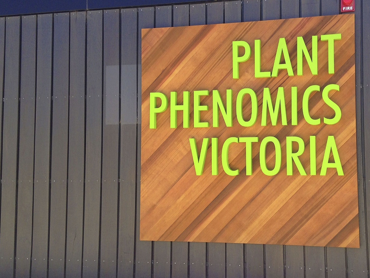 plant-phemonics-victoria-fabricated-letters-onto-timber-backing